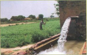 Subsurface irrigation or simply subirrigation method